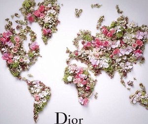 flowers, world, and map image
