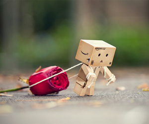 rose, box, and danbo image