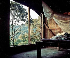 room, bed, and nature image