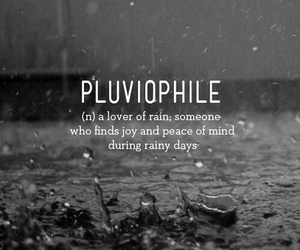 rain, pluviophile, and quotes image