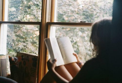 Hide to read or read to hide? on We Heart It