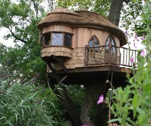 tree house, flowers, and house image