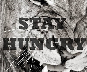hungry, lion, and motivation image