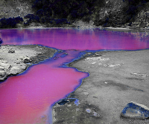 pink, purple, and water image