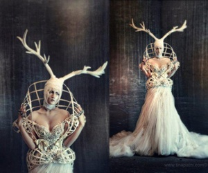 antlers, Couture, and fashion image