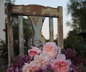 chair, forest, and garden image