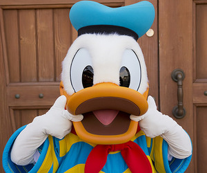 disney, donald duck, and cute image