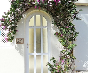 flowers, white, and door image