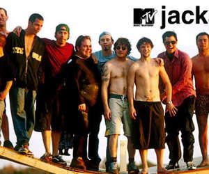 jackass and love image