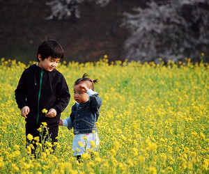 d40, flower field, and korea image