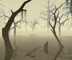 fog, water, and mist image