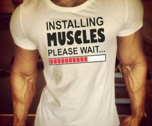 muscles image