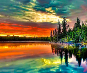 colorful, colors, and nature image