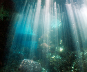 ature, ocean, and sunlight image