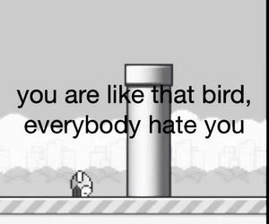 flappy bird, hate, and bird image