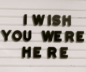 quotes, wish, and you image