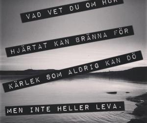 håkan hellström and love image