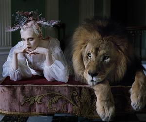 lion, model, and tim walker image