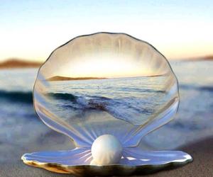 sea, beach, and pearl image