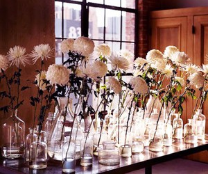 flowers, vases, and interior image