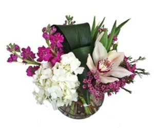 flowers, hydrangea, and orchid image