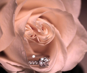 february, engagement ring, and love image