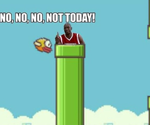 bird, funny, and game image
