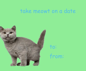 cat, funny, and valentines day image