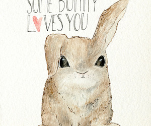 bunny, love, and cute image