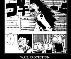 funny, fairy tail, and gajjell image
