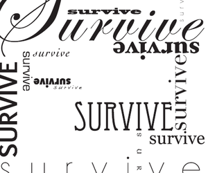 lettering, word, and survive image