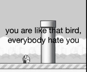 flappy bird, hate, and bird image