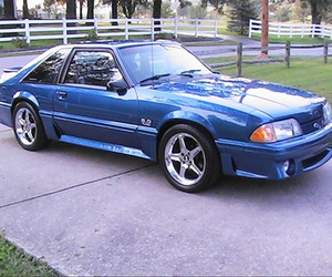 blue, mustang, and sexy image