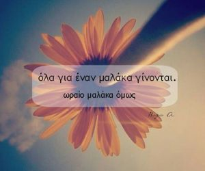 greek, flowers, and greek quotes image