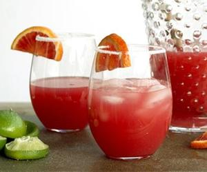 booze and margaritas image