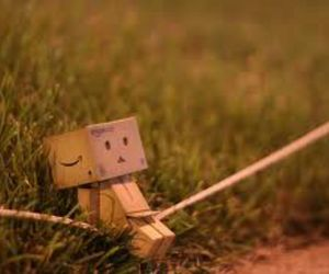 danbo and lonely image