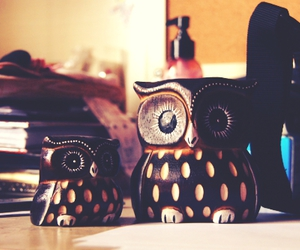 owl, animal, and toys image
