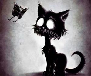 cat, black, and butterfly image