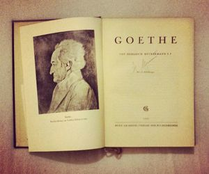 goethe and poetry image