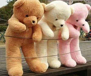 bear, pink, and teddy image
