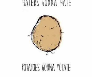 hate, nice, and potatoes image