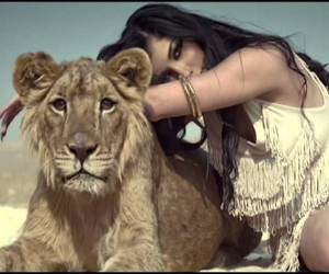 belly dancer, lion, and girl image