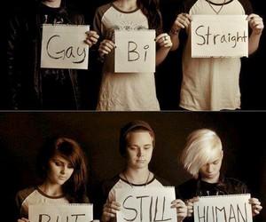 gay, human, and bi image