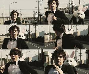 evan peters, rabbit, and american horror story image