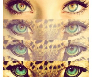 eyes, girl, and tiger image