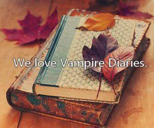 book, love, and the vampire diaries image