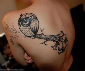 nice, owl, and tattos image