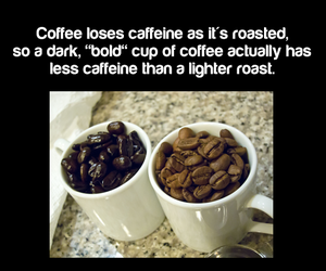 coffee, fact, and interesting image