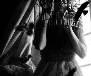 bird, girl, and cage image