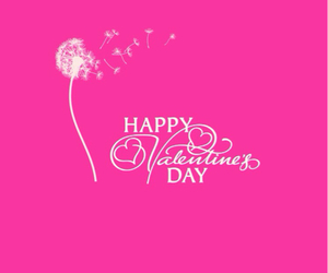 love, pink, and valentines day image